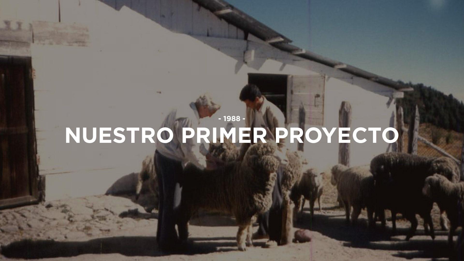 1-proyecto