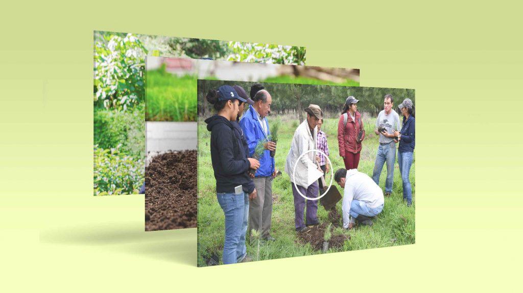 Sensibilización y Educación Ambiental